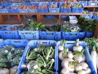 店頭の野菜たち