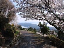 桜の頃の弥高山